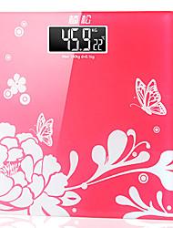 L'arrivée de nouveaux mode de mesure Précision Echelle avec écran LCD (couleurs assorties)