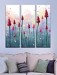 Stretched Canvas Art Flowers in Clusters Set of 3