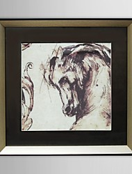 Animal Horse Framed Art Print