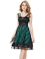 Women's Dress , Lace Knee-length Sleeveless