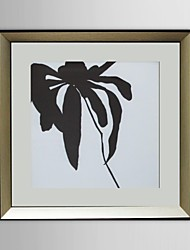 Animal Spider Framed Art Print