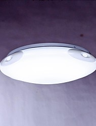 MAISHANG® Ceiling Lamps , 1 Light , Artistic Stainless Steel Plating MS-33063-1