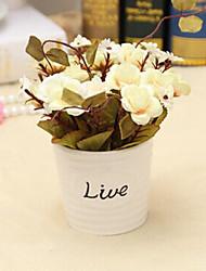 "4.8""H Fresh Rose in Ceramic Vase"