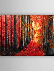 Hand Painted Oil Painting Landscape Red Forest Trees with Stretched Frame