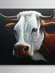 Hand Painted Oil Painting Animal Cute Cow with Stretched Frame