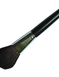 maquillage poudre minérale brosse