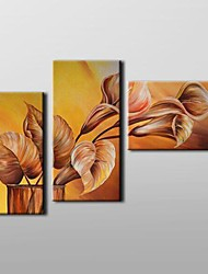 Hand Painted  Floral  Oil Painting with Stretched Frame Set of 3