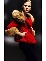 3/4 Sleeve Hooded Raccoon Fur Collar And Rabbit Fur Casual/Party Jacket(More Colors)