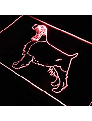 J537 springer spaniel anglais chien signe de néon animal de compagnie