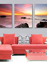 Stretched Canvas Print Art Landscape Sunrise at Sea Set of 3