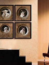 The Classical Animal Framed Canvas Print Set of  4