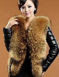 xt fourrure de raton laveur coat_79 collier (noir)