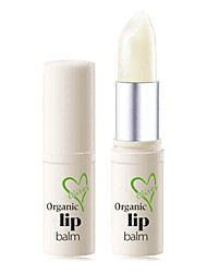 Lip Primer Dry Gel Coloured gloss / Moisture