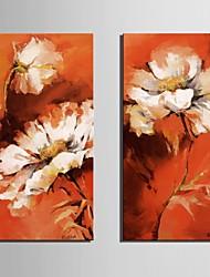 étirées fleurs de rêve sur toile set de 2