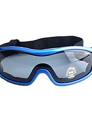 Sport Motorcycle Goggles Windproof Glasses Motobike Transparent Clear Lens Glass