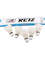 nieuwe Reiz 12st / lot ganzenveren shuttles badminton ballen sport opleiding groothandel