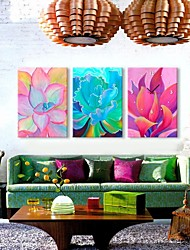 Oil painting Color Plants Clock in Canvas 3pcs