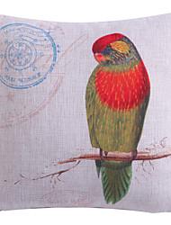 backside multi-colorido padrão papagaio fronha de poliéster