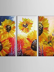 Hand Painted Oil Painting Floral Blooming Sun Flower with Stretched Frame Set of 3