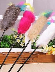 Cães / Gatos Brinquedos Brinquedo de Provocação / Brinquedo com Penas Bastão / Elástico Téxtil