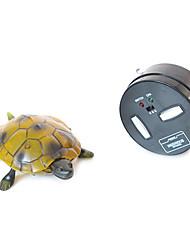 juguetes rc mascotas electrónicas adorables exótico modelo animal juguetes tortuga emulación rc