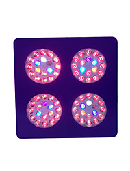 12*12*3 Inch 72X3W Led Grow Light Metal Painting