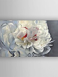 Oil Painting  Flower  Hand Painted Canvas with Stretched Framed
