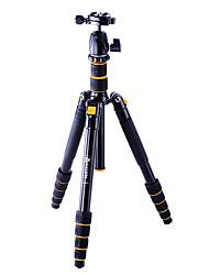 VICTORY A255 Detachable Tripod for Nikon D810 D3300 D610/Canon 70D