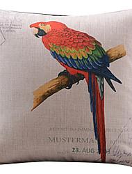 teste padrão colorido papagaio algodão / fronha decorativo linho