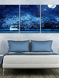 Personalized E-HOME® Canvas Print The Moonlight Scene 35x50cm 40x60cm 50x70cm Framed Canvas Painting Set of 3