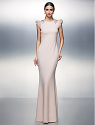 TS Couture® Formal Evening Dress Plus Size / Petite Sheath / Column Jewel Floor-length Jersey with Crystal Detailing