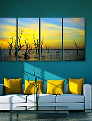 E-HOME® Stretched Canvas Art  Dusk Decorative Painting Set of 4