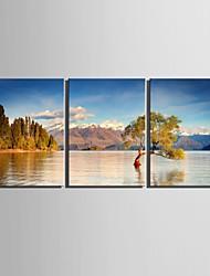 e-HOME en lienzo de arte del paisaje del lago Conjunto de la decoración de pintura de 3