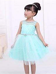 vestido de la princesa del estilo lindo cindys de chica