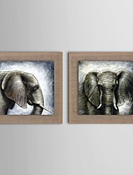 Oil Painting Modern Animal Elephant Set of 2 Hand Painted Natural linen with Stretched Frame