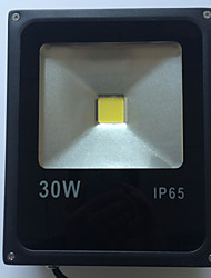 Flood Light Waterproof AC170-240V 30W