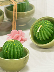 Potted Flower Ball Cactus Two Pack Gift Box Candle