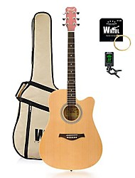 Spruce Dreadnought Acoustic Guitar Cutway with Assorted Colours+Accessory Pack