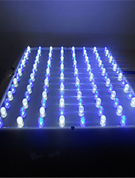 Led Grow Light 112 Leds Modern Blue White PC