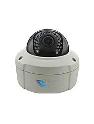 grote 1080p ir vandaalbestendige dome ip camera
