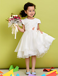 A-line Jewel Tea-length Polyester Flower Girl Dress