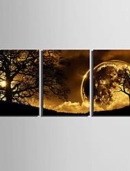 e-home® lona esticada arte crepúsculo sob a árvore set pintura decorativa, de 3 de