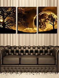 e-FOYER toile tendue art crépuscule sous l'arbre décoratif ensemble de trois de peinture