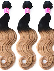 """3 Pcs/Lot 12""""-26"""" 100% Malaysian Unprocessed Virgin Human Hair #1B-27 Color Ombre Body Wave Hair Weaves"""