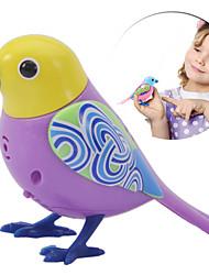 pássaros cantando brinquedos elétricos Tweet solo de música coral voz