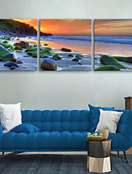 e-home® allungato su tela spiaggia spiaggia di pietra insieme pittura decorativa di 3