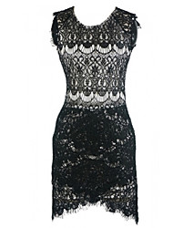 Women's Sexy/Bodycon Stretchy Sleeveless Dress (Lace)