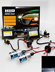 12V 55W HB4 Hid Xenon Conversion Kit 8000K
