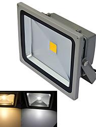 JIAWEN® Gray IP65 Waterproof 30W 2800Lm 3000-3200K/6000-6500K Warm White Light /White Light LED Flood Light (DC 12V)