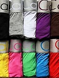 Boxer 2 Stück Baumwollstoff CK01 beste Preis Förderung für reizvolle Mens-Boxer-Shorts Herren Soft Unterwäsche